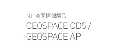 GEOSPACE CDS