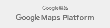 Google map for world logo