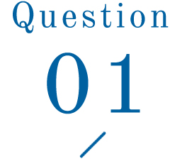 Question 01