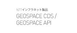GEOSPACE CDS / GEOSPACE API